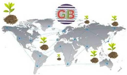 World Trade co Ltd